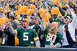 Fans of the Green Bay Packers celebrate a touchdown during an NFL football game against the Minnesota Vikings at Lambeau Field on November 11, 2007 in Green Bay, Wisconsin. The Packers beat the Vikings 34-0. (Photo by David Stluka)