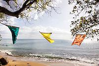 Flags on the beach at Balneario de Rincón in Rincón, Puerto Rico on 1st January 2012.