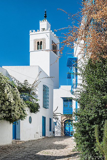 A quaint streetscape in the town of Sidi Bou Said in Tunisia. It is located about 20 km from the capital, Tunis. The town was named after a religious figure who lived there, Abou Said ibn Khalef ibn Yahia Ettamini el Beji. It is popular with tourists due to its extensive use of blue and white in its architecture. It also has a reputation as a town of artists.