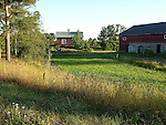 Farm on the Island of Kökar, Åland, Finland
