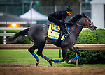 LOUISVILLE, KENTUCKY - APRIL 30:Roadster and Humberto Gomez gallop in preparation for the Kentucky Derby at Churchill Downs in Louisville, Kentucky on April 30, 2019. Evers/Eclipse Sportswire/CSM