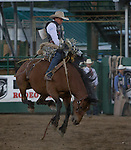"""Jesse Wright from Milford, UT competes in the Saddle Bronc Riding event during Purple Night at the Rodeo on Tuesday night, June 21, 2016.  """"Man Up Crusade Night"""" encouraged rodeo goers to wear purple for advocacy to stop domestic violence."""