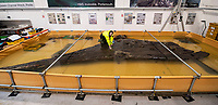 BNPS.co.uk (01202 558833)<br /> Pic: PhilYeomans/BNPS<br /> <br /> The cutwater or bow of the Invincible is preserved at MAST in Poole.<br /> <br /> Fascinating artefacts salvaged from a historic gun ship which sunk off the British coast 261 years ago have gone on display for the first time.<br /> <br /> The French built ship is credited with transforming the Georgian Royal Navy after its capture in 1747 when trials revealed it was sleeker and better armed than British warships of the day.<br /> <br /> Unfortunately HMS Invincible  became wrecked on a shallow sand bank in the Solent in 1758 when en route to fhelp fight the French in Canada.<br /> <br /> The wreck, which is three nautical miles from Portsmouth, Hants, was first discovered by a fisherman in shallow 25ft waters 40 years ago. However, changing sea bed levels in the past few years have left it more exposed to the elements, leading to fears the relics could deteriorate.<br /> <br /> This prompted archaeologists to carry out a full scale excavation, with 1,458 dives taking place between 2017 and 2019 - during which nearly 2,000 artefacts were recovered.<br /> <br /> The array of new finds, including the ship's enormous cutwater - the forward curve of the ship's stem - have now been unveiled at the MAST Archaeological Centre in Poole, Dorset. They will eventually go on display at the National Museum of the Royal Navy in Portsmouth.<br /> <br /> Mr Pascoe said the HMS Invincible's innovative longer, streamlined design was copied by the British who adopted it on their ships up until the Battle of Trafalgar (1805).