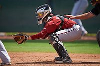 Arizona Diamondbacks catcher Tyler Baker (5) during an instructional league game against the Texas Rangers on October 10, 2015 at the Salt River Fields at Talking Stick in Scottsdale, Arizona.  (Mike Janes/Four Seam Images)