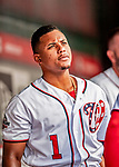 1 August 2018: Washington Nationals infielder Wilmer Difo looks out from the dugout prior to facing the New York Mets at Nationals Park in Washington, DC. The Nationals defeated the Mets 5-3 to sweep the 2-game weekday series. Mandatory Credit: Ed Wolfstein Photo *** RAW (NEF) Image File Available ***