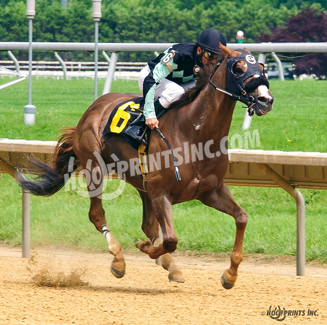 Magic Lion winning at Delaware Park on 6/4/16