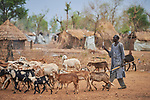 A man herds goats in the Kaya Refugee Camp in Maban County, South Sudan. Kaya is one of four camps in Maban County that together shelter more than 130,000 refugees from the Blue Nile region of Sudan. Misean Cara provides support for the work of Jesuit Refugee Service in Maban.
