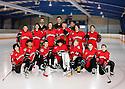 2016 WSHV Pee Wee Red Hockey (F-102)