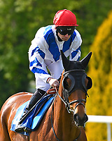 Tapdancealltheway ridden by Robert Havlin goes down to the start of The Smith & Williamson Handicap (Class 6)     during Afternoon Racing at Salisbury Racecourse on 17th May 2018