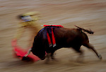 Spanish matador Daniel Luque performs a pass with capote to a Torrehandilla´s bull during the last corrida of the San Fermin Festival, on July 14, 2012, in the Northern Spanish city of Pamplona . (c) Pedro ARMESTRE
