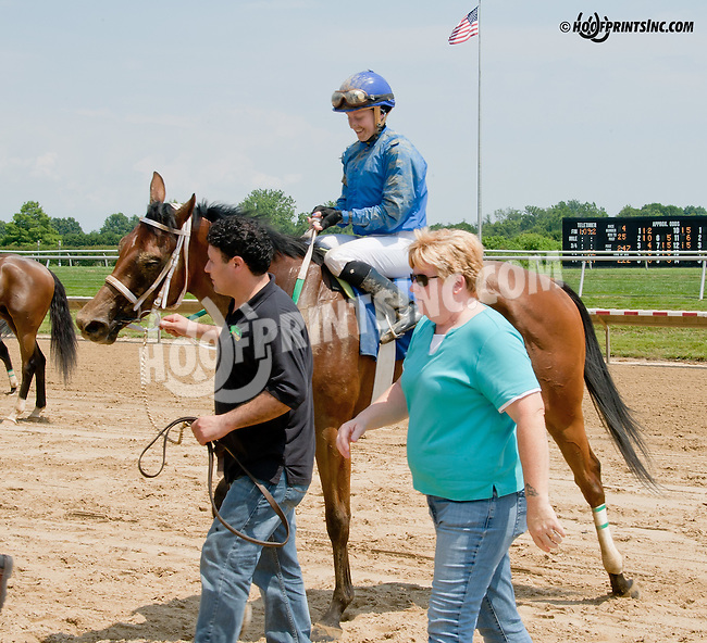 Barracuda Wayne winning at Delaware Park on 7/12/14
