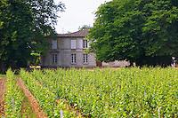 Chateau Rahoul and vineyard Graves Pessac Leognan Bordeaux Gironde Aquitaine France