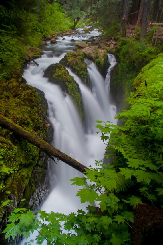 Sol Duc Falls, Sol Duc River, Olympic National Park, Washington, US