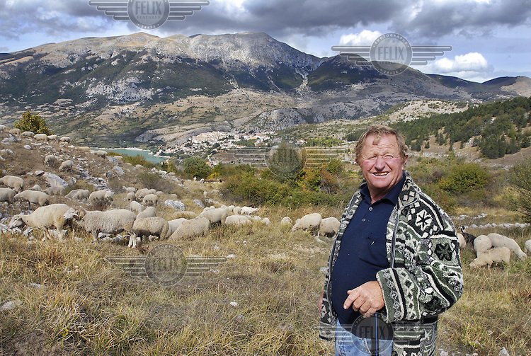 A herder in the mountains with a herd of sheep near the village of Barrea..