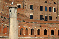 Rome, Fora: A broad view of the ancient markets on the back of the large oriental exedra of the Forum of the emperor Trajan (end of the I century AD), with a Corinthian capital on the top of a column in the Forum in foreground, on the left. There is a seagull on the capital.<br />