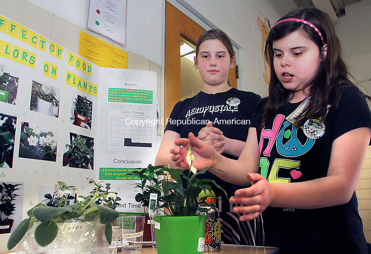 PROSPECT CT.-15 APRIL 2010-041510DA02- Annakate Scott, 9, right, explains her science project of the effect of pouring colored water into her plants to change the color of them to her friend Cheyenne Quackenbush, 9 during a third grade science fair at Algonquin School in Prospect Thursday. Scotts conclusion was that there was no effect done to the plants.  Darlene Douty Republican-American
