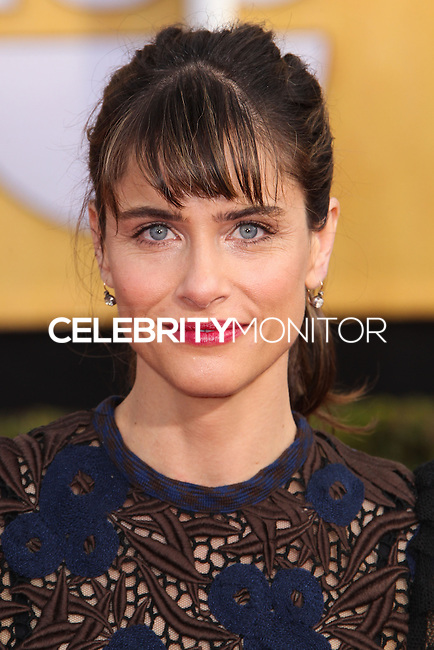 LOS ANGELES, CA - JANUARY 18: Amanda Peet at the 20th Annual Screen Actors Guild Awards held at The Shrine Auditorium on January 18, 2014 in Los Angeles, California. (Photo by Xavier Collin/Celebrity Monitor)
