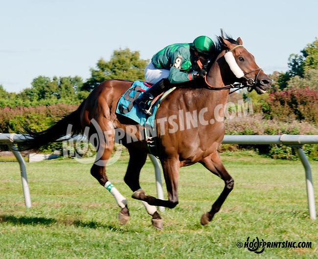 Fire Ruler winning at Delaware Park on 9/28/13