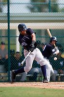 New York Yankees Dermis Garcia (31) swings at a pitch during an Instructional League game against the Pittsburgh Pirates on September 28, 2017 at Pirate City in Bradenton, Florida.  (Mike Janes/Four Seam Images)