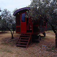 A vintage showman's wagon is parked up in an olive grove for the summer