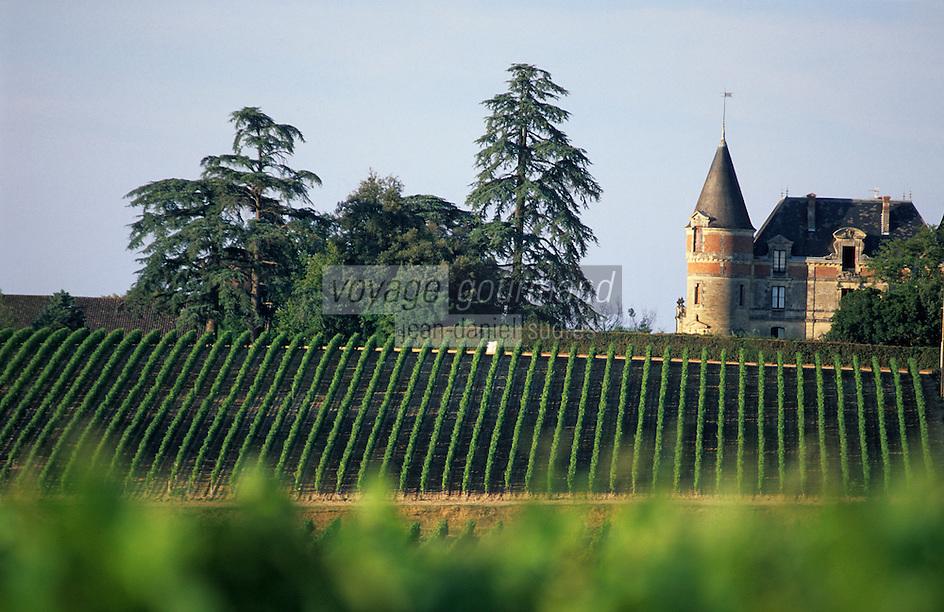 Europe/France/Aquitaine/33/Gironde/Sauternais/Env de Bommes: Le Château Rayne Vigneau et son vignoble
