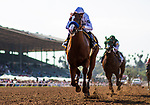 ARCADIA, CA - APRIL 07: Justify #6 with Mike Smith defeat Bolt d'Oro #3 and Javier Castellano to win the Santa Anita Derby at Santa Anita Park on April 07, 2018 in Arcadia, California.(Photo by Alex Evers/Eclipse Sportswire/Getty Images)