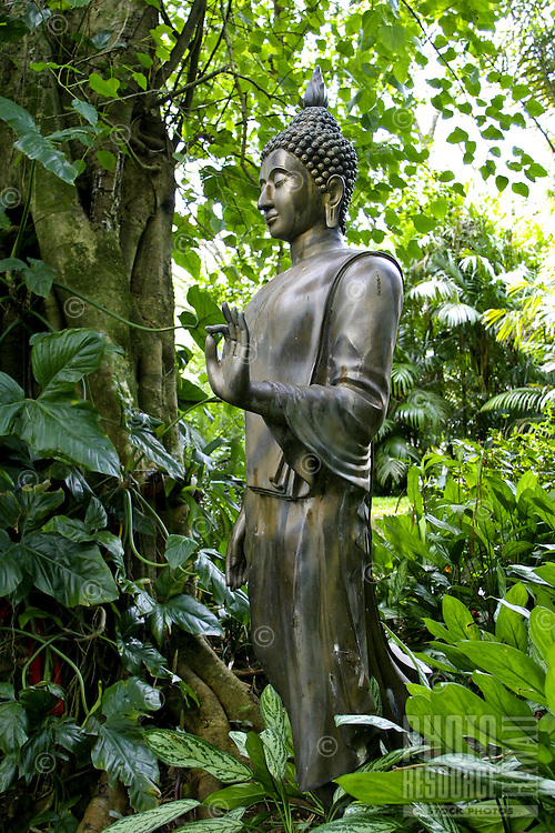 The Thai Walking Buddha statue stands amidst the lush tropical gardens at the Lyon Arboretum located in Manoa Valley on Oahu.