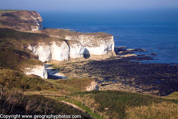 Coastal scenery at Flamborough Head, Yorkshire, England