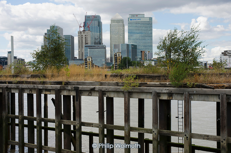 Canary Wharf and Barclays, HSBC and Citi bank buildings on the Isle of Dogs, seen from a derelict wharf on the south bank of the river Thames.