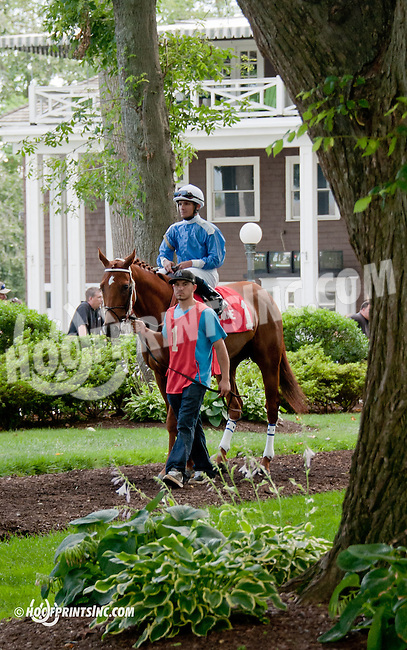 Bet the Power before The Hockessin Stakes at Delaware Park on 7/4/13