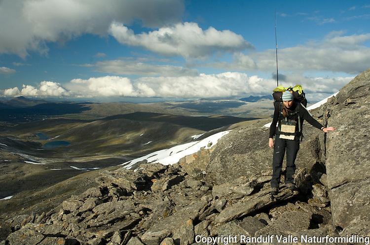 Jente går i fjellterreng på Saltfjellet ---- Girl walking