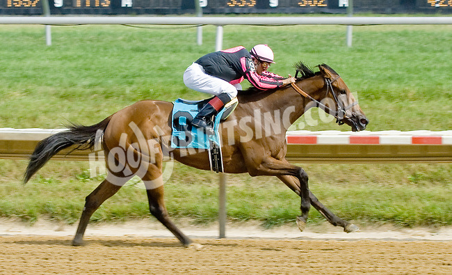 Flatter Me Up winning at Delaware Park on 7/5/12