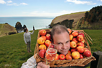Cider producers Daniel and Geraldine Emerson use the pick of the crop for their Specialist Low Alcohol 1.5% Tobairin Cider at Stonewell Brewery outside Kinsale in Co Cork pictured on Tuesday for the launch of the 2013 Blas na hEireann, Irish Food Awards, which are now open for entry to producers from all over the country. Daniel and his team at Stonewell, who took a Bronze Award for their medium Stonewell Cider last year, have just recently started aging some ciders in French oak barrels, and will be hoping to score highly with these exciting new varieties in this year&rsquo;s competition.<br /> Further information on www.irishfoodawards.com<br /> Photo: Don MacMonagle<br />  <br /> For further information please contact: Sue James @ James PR on 0857336981.<br /> Daniel Emerson of Stonwell Cider is available for interview on 086 8691148<br /> Artie Clifford, Irish Food Awards is available for interview on 087 2026420 <br /> <br /> <br /> &copy; Photo by Don MacMonagle - macmonagle.com<br /> info@macmonagle.com