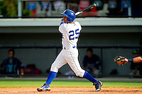 Ramon Torres (25) of the Burlington Royals follows through on his swing against the Princeton Rays at Burlington Athletic Park on July 5, 2013 in Burlington, North Carolina.  The Royals defeated the Rays 5-1 in game one of a doubleheader.  (Brian Westerholt/Four Seam Images)