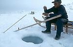 Inuit pêchant , au trou, le flétan sur la banquise. Groënland (côte Est). Région d'Angmagssalik (Ammasalik ou Tassilaq). Eskimo fishing halibut on the ice floe; Greenland (East coast).