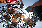Dungeness Crab, crab fishing, Port Townsend, Puget Sound, Washington State, Pacific Northwest, United States, recreational crabbers, off Rat Island, crab pots, summer, Brad Matsen, Barbara Manchester,