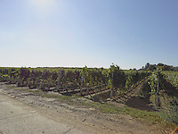 VY_LOCATION_75054