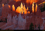 Queen's Garden Hoodoos at Sunrise, Sunrise Point, Bryce Canyon National Park, Utah