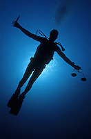 Silhouette of diver with knife and weight scale, underwater view