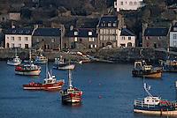 Europe/France/Bretagne/29/Finistère/Le Conquet: Le port