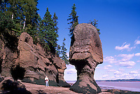 The Hopewell Rocks, NB, New Brunswick, Canada - Carved Sandstone Rock Formations at Low Tide, along Bay of Fundy Shoreline