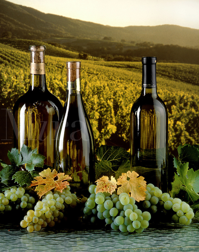 WHITE WINE is one of the west coasts primary agricultural products