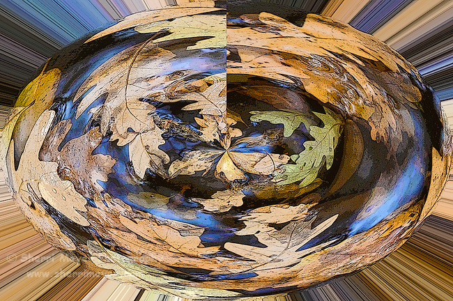 Digital art of oak leaves floating in a puddle, from a original photograph