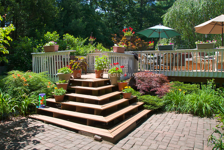 Garden patio of stone pavers with raised wooden deck and stairs, container garden plants and flowers, Hemerocallis daylilies, Japanese maple Acer palmatum var. dissectum, umbrella and garden furniture, outdoor room lifestyle living with blue sky, trees, shade patterns for landscaping around a deck