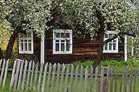 Musteika Village, on the border of the Cepkeliai reserve and the Dzukija National Park, Lithuania, EU