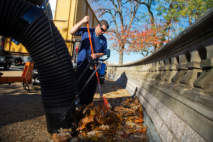 UNITED STATES - NOVEMBER 18: Matt Riley from the Architect of the Capitol office rakes up leaves on the west front of the Capitol. (Photo By Tom Williams/CQ Roll Call)