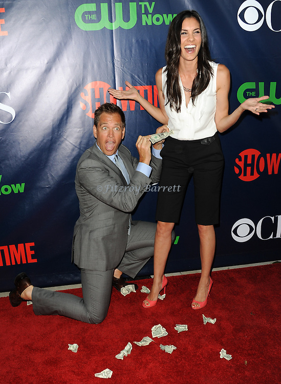 Michael Weatherly and Daniela Ruah arriving at the CBS And CW TCA Summer Party 2014 held at The Pacific Design Center Los Angeles, CA. July 17, 2014.