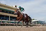 HALLANDALE BEACH, FL - JANUARY 27: Life's a Parlay with John Velazquez aboard breaks his maiden at Gulfstream Park Race Track on January 27, 2018 in Hallandale Beach, Florida. (Photo by Alex Evers/Eclipse Sportswire/Getty Images)