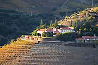 vineyards a quinta douro portugal