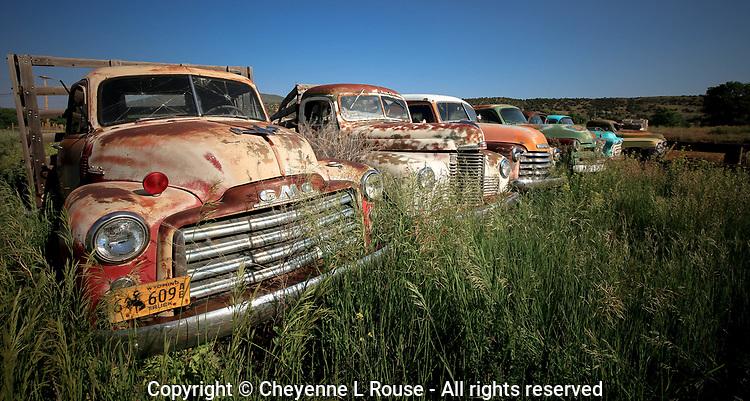 Field of Rusty Dreams - New Mexico